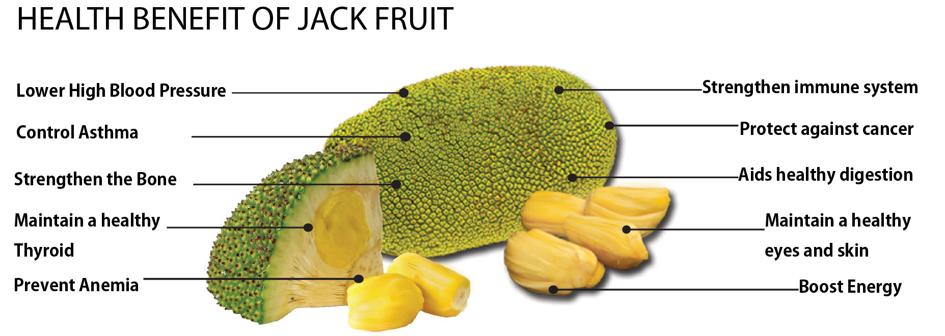 Can Cats Eat Jackfruit