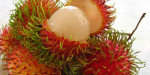 Whats-the-Difference-Between-Rambutan-and-Lychee-by-Green-Blender1
